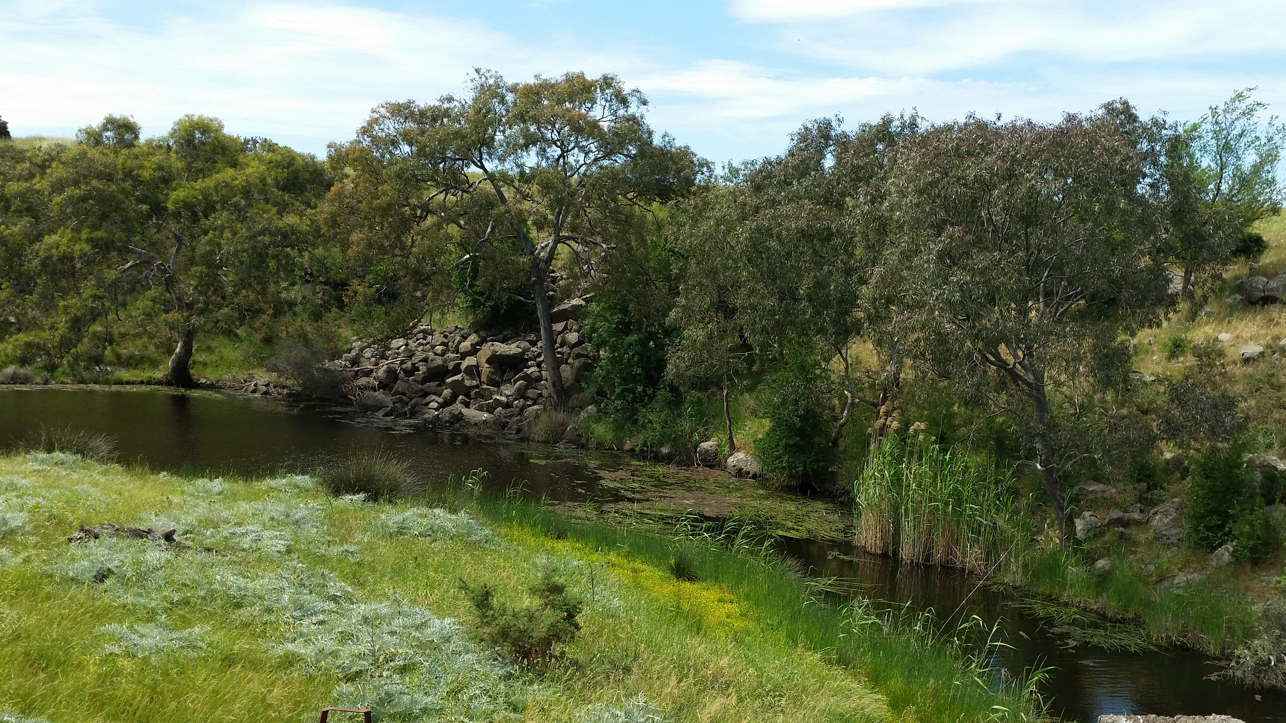 Example of in-stream habitat for GGF